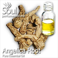 Pure Essential Oil Angelica Root - 10ml - Click Image to Close