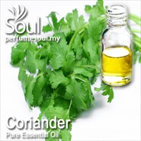 Pure Essential Oil Coriander - 10ml