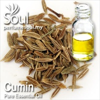 Pure Essential Oil Cumin - 10ml