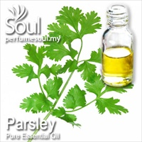 Pure Essential Oil Parsley - 50ml