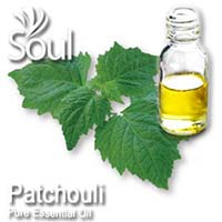 Pure Essential Oil Patchouli - 50ml - Click Image to Close